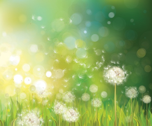 Dandelion and green nature background vector Free vector in
