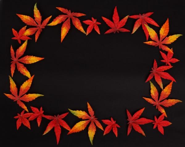 dark autumn leaf frame