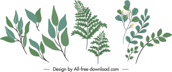 decorative nature elements classic leaves branches sketch