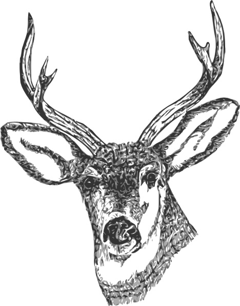 Deer Head Clip Art Free Vector In Open Office Drawing Svg Svg