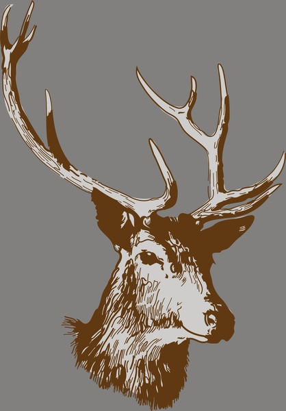 Vector Deer For Free Download About 73 Vector Deer Sort