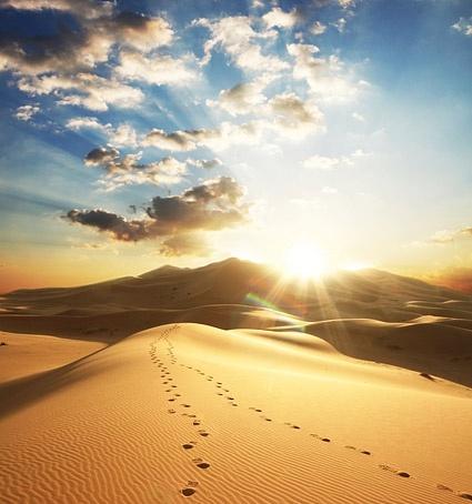 desert at dusk picture