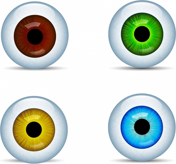 Eyeball Free Vector Download 32 Free Vector For