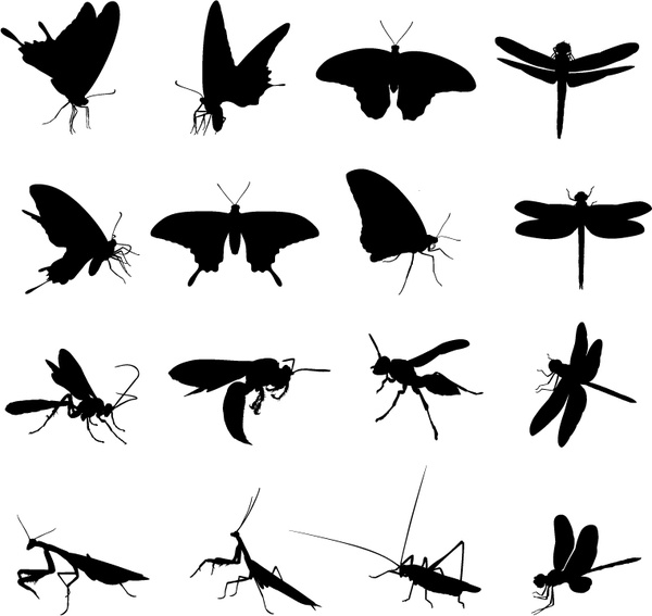 different insect silhouettes creative vector