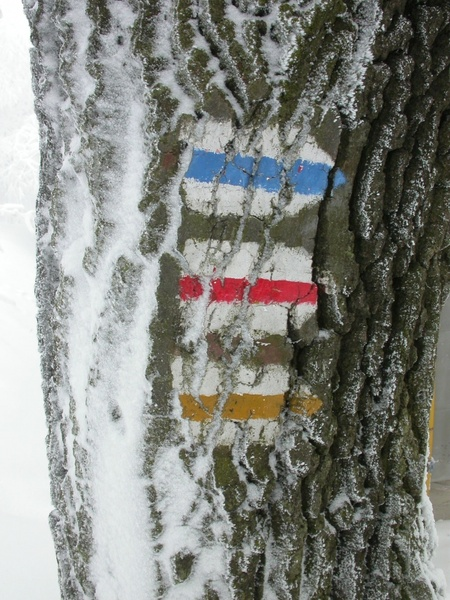 directory winter snow