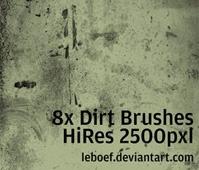 Dirt Brush Set