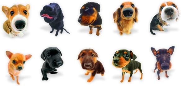 Dogs Icons icons pack