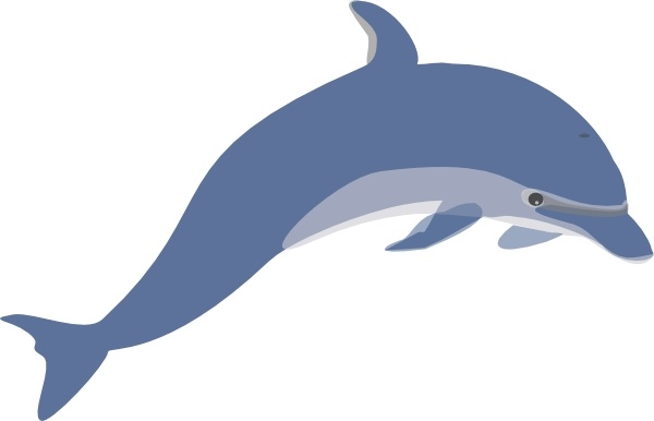Dolphin Clip Art Free Vector In Open Office Drawing Svg