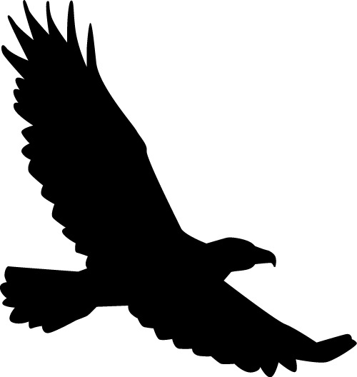 flying eagle silhouette free vector download  6 905 free hawk clipart black hawk clipart black