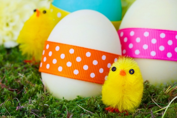 easter chicks and eggs