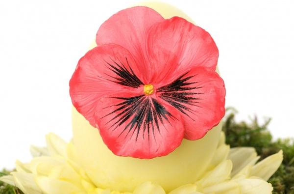 easter egg with flower