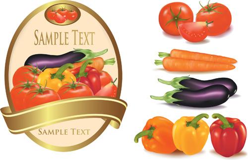 elements of salad mix vector graphic