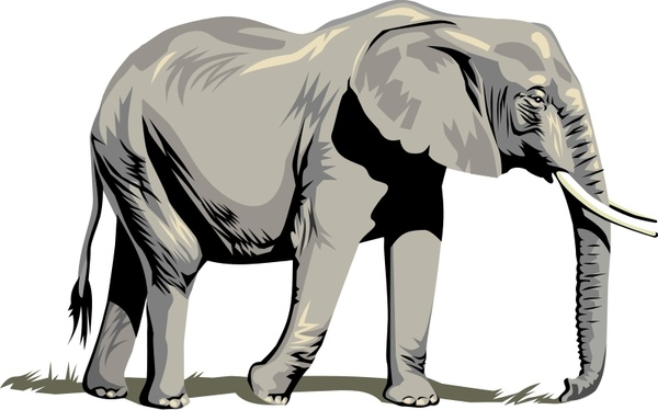 Elephant Free Vector In Open Office Drawing Svg Svg