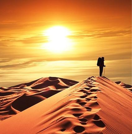 evening desert picture