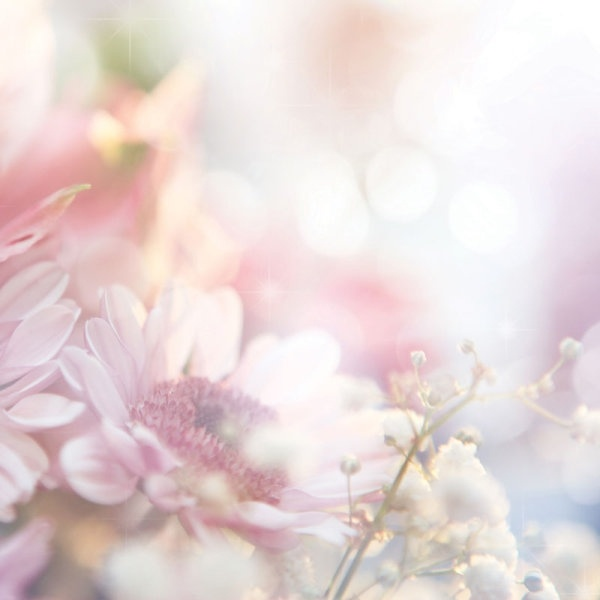 Flower bouquets pictures free stock photos download (10,875 Free ...