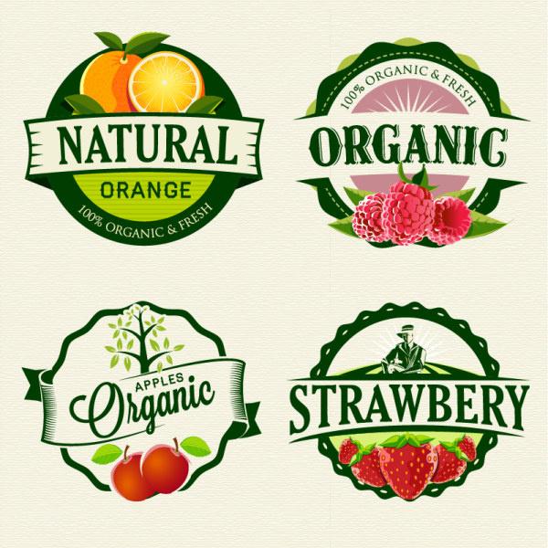 exquisite fruit labels retro style vector