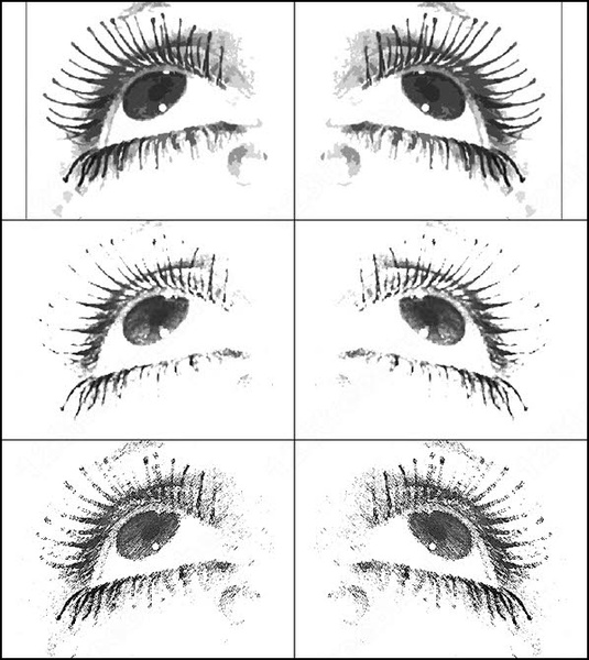 Eye Hair Photoshop Brushes Download 34 Photoshop Brushes For