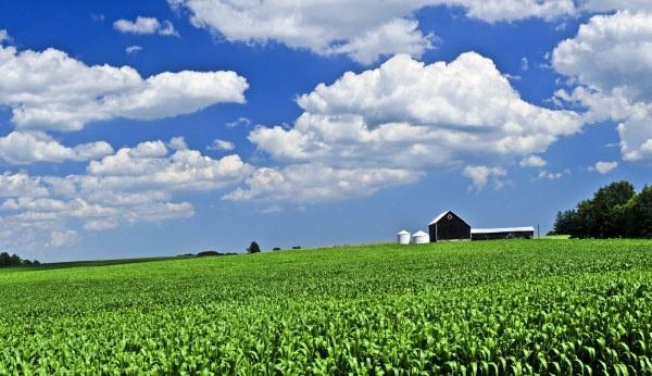 farm scenery hd picture