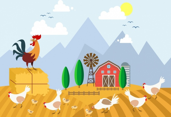 chicken free vector download 419 free vector for