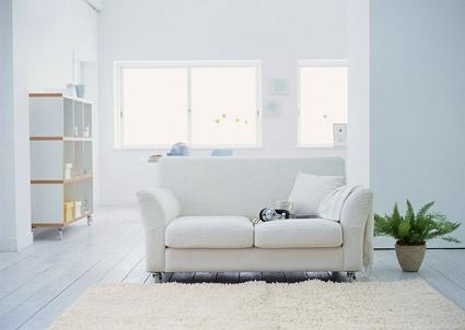 fashion sofa fine picture