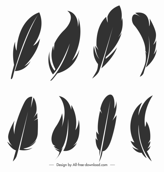 feather icons black white handdrawn sketch