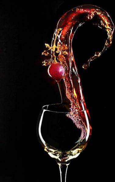 fine red wine picture 4