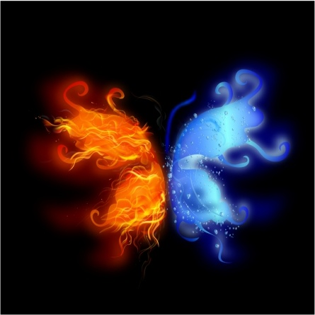 Fire and water butterfly
