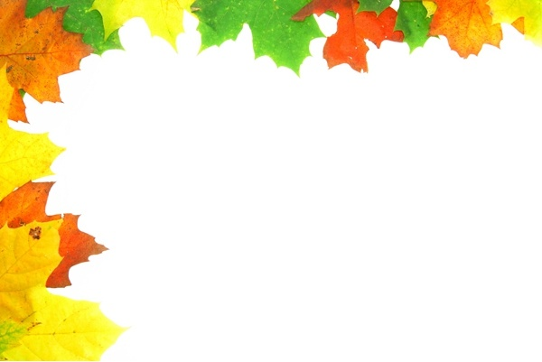 five leaves border 02 hd picture