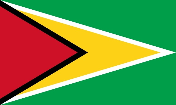 flag of guyana clip art free vector in open office drawing