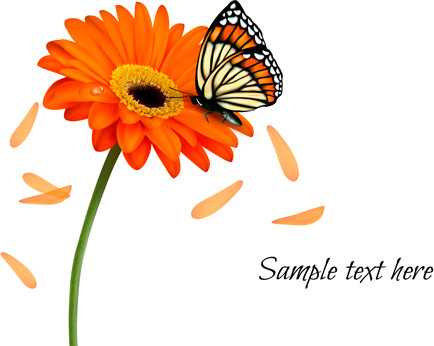 floral butterfly with flower vector