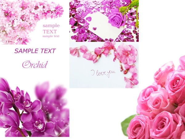 flower card template definition picture nonoriginal works