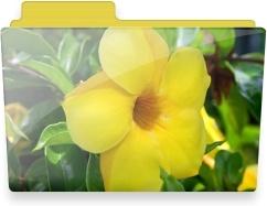 Flower folder
