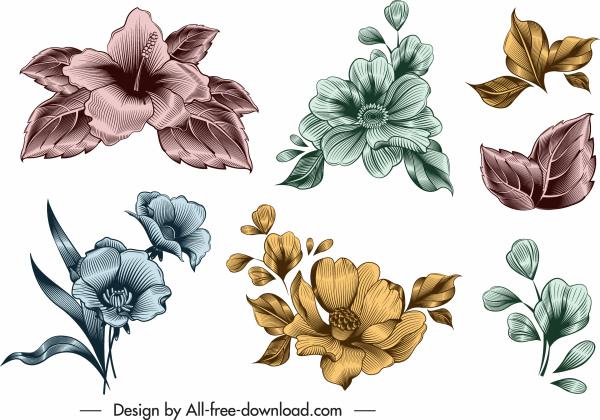 flower icon templates shiny colored elegant vintage design