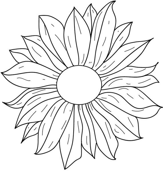 Flower Line Art Images: Flower Line Drawing Free Vector In Adobe Illustrator Ai