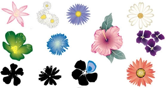 flower icons collection various colored types