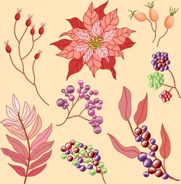 flowers design elements classical colored decor