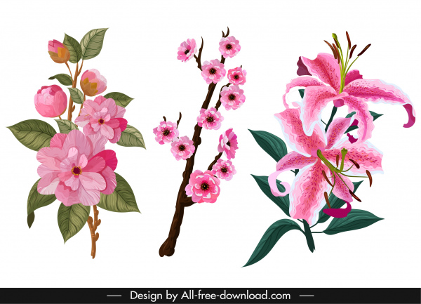 flowers icons colored classical decor
