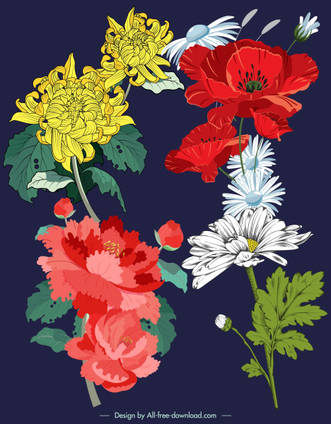 flowers painting colorful classical sketch