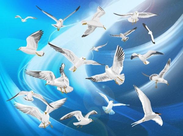 flying birds 01 vector