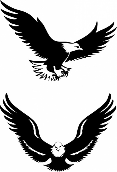 Flying eagles Free vector in Adobe Illustrator ai (  AI