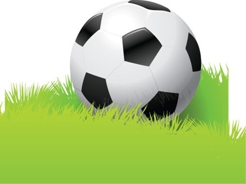 Football in The Grass Vector Graphic