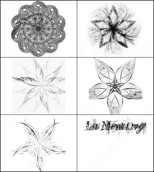 fractal flower brush