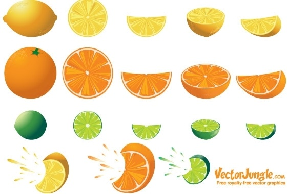 Lime Wedge Free Vector Download 90 Free Vector For Commercial Use Format Ai Eps Cdr Svg