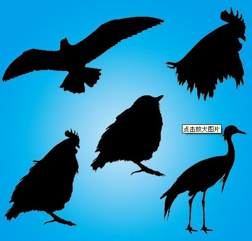 free vector animals silhouettes