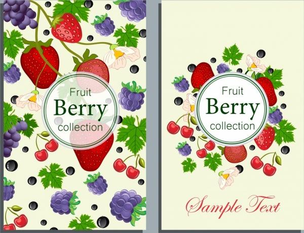 fresh fruit background strawberry grape cherry icons
