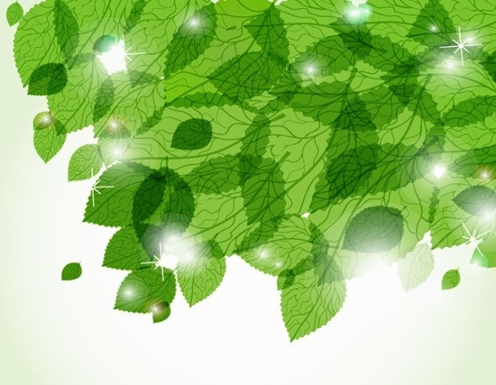 fresh green leaves vector background