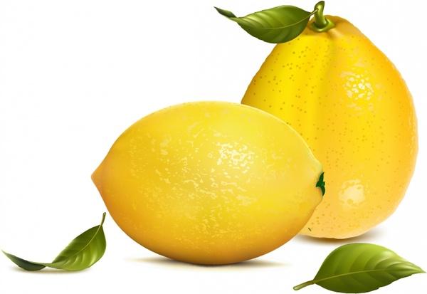 Fresh lemons with leaves