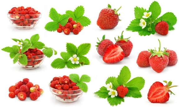 fresh strawberries hd picture 1
