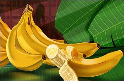 fruit bananas psd layered