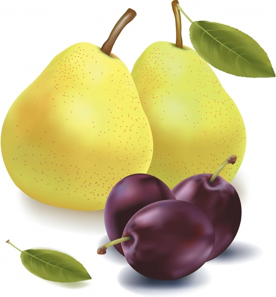 fruit background pear cherry icons colored realistic design